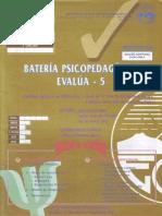 Manual Evalua 5 (1).pdf