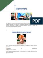 El Ingeniero Industrial entre muchas otras actividades eluar.docx