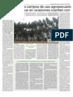 Propiedad de la tierra en Uruguay / Octubre 2014.pdf