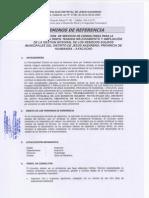 TDRRRSS.pdf