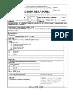 AGENDA DE LABORES  CARTAGENA.doc