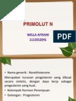 PRIMOLUT N.pptx