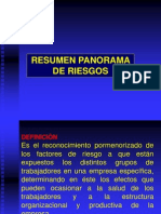 Resumen Panorama de Riesgos