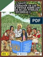 Declaración Pueblos Indígenas ONU - Centro Prodh