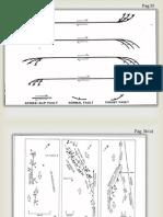Páginas 53, 54, 55 y 56. Diapositivas.