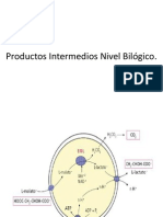 Productos Intermedios Nivel Bilógico