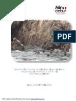DIAGNOSTICO_SOCIO_AMBIENTAL_PARACAS.pdf