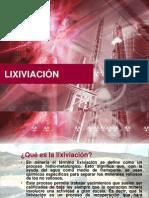 Procesos de Lixiviacion (Voluntario)