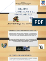 DELITOS INFORMATICOS Y EL PROGRAMA SAP