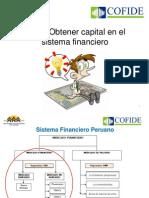 Como Obtener Capital Del Sistema Financiero-Orlando Ranilla