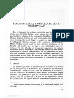 fenomenología y ontología de la subjetividad (estudios de Metafísica)