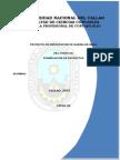 Exportacion de Arina de Maca - Formulacion de Proyecto
