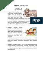 PRECAUCIONES DEL CAFÉ , Medicamento y Bibliografia
