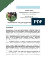 CARTILLA11 GANADERIA ECOLOGICA.pdf