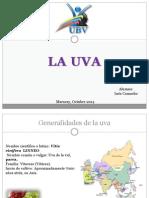la Uva.pptx