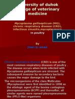 Chronic Respiratory Disease (CRD)
