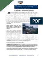 07 formulacion proyectos inversion plantas beneficio.pdf