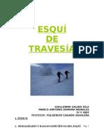 Resumen descriptivo del esquí de montaña
