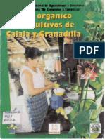 CULTIVO+DE+GRANADILLA+Y+CALALA