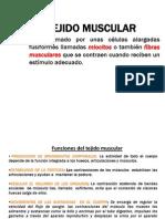 Clase 7 Tejidomuscular IIP