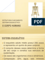 Sistemaesqueletico Ppt 130321112857 Phpapp02
