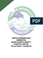 09 Msa Puerto Montt