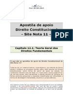 Apostila de Apoio-cap 12 1-Teoria Geral Dos Direitos Fundamentais