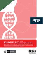 MapasProgreso_Matematica_NumerosOperaciones