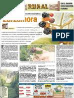 RURAL Revista de ACB Color - 28 octubre 2009 - PARAGUAY - PORTALGUARANI