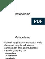 pengantar-METABOLISME UMUM