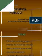 Responsabilidade Do Servidor Publico