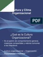 cultua organizacional