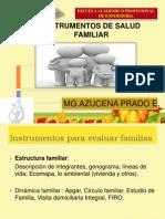 Instrumentos de Salud Familiar 120603184120 Phpapp01 2