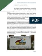Informe de Cuyisea