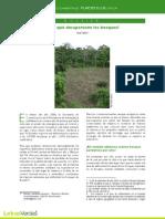 12. A. Dossier. Porqué desaparecen los bosques. Paúl Tufiño.pdf
