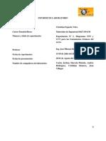 Informe de Diagramas TTT y CCT para los tratamientos térmicos del acero
