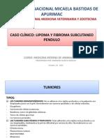 CASO CLÍNICO (EMERSON HUAYCA).pptx