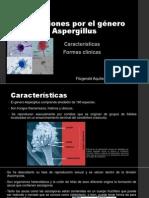 Infecciones Por El Género Aspergillus