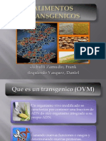 Alimentos transgenicos (Transgenic food)