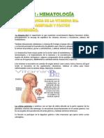 Trabajo sobre Hematología e interpretación de una analítica de sangre
