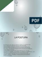 Tratamiento Postural en Pasiente Postrado