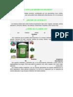 QUÉ SON LOS RESIDUOS SÓLIDOS crm 01.docx