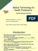 medical terminology cardiovascular system
