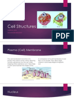 cell structures final