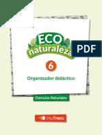 ECO6_OD
