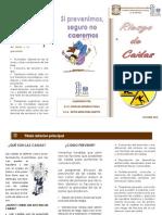 Riesgo de Caidas Med Qx 2 10-2014