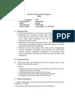 RPP fungsi