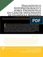 Diagnóstico Histopatológico CA Mama