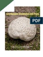 Los Hongos Olvidados Del Perú