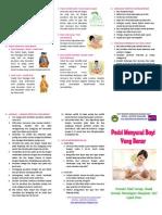 Leaflet ASI OK